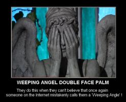 DW - Weeping Angel Double Face Palm by DoctorWhoOne