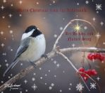Merry Christmas Chicadee by DGAnder