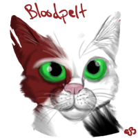 Bloodpelt Profile by Brookreed