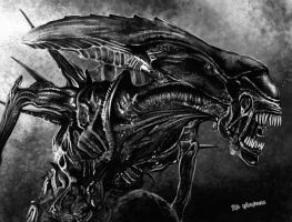 Xenomorph Queen by freakingfabulous