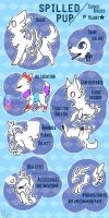 Spilled Pup Species Info! by Yujuki