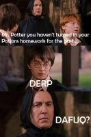 Derp and Dafuq Harry Potter by harypotter37