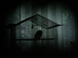 caged by Valentin-JSF