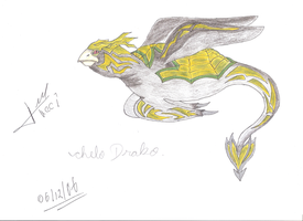 2006 - Chelo Drako by Tuccifml