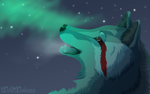 Cold Winter Night Comission by WildWolvess