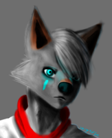 coolpic attempt 1 PNG by RaiguTheFox