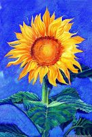 Sunflower by Ezeg