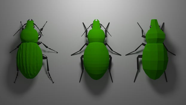 3 steps of creating ground beetle by kuki77