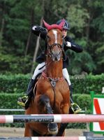 Showjumping VI by firegold