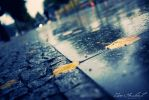 Rainy Day in Berlin II by IsacGoulart