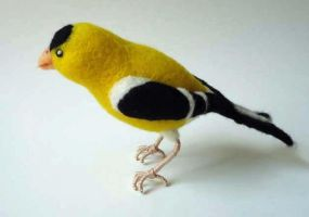 Small Goldfinch by Lobster-Ball