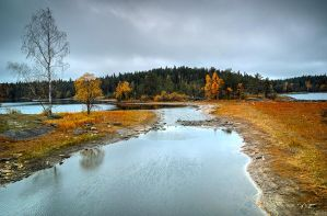 Autumn and Sigma Dp0 Quattro..Valaam Islands  _54_ by my-shots
