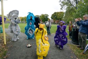 2014 Honk Festival, Tribal Music and Dance 2 by Miss-Tbones