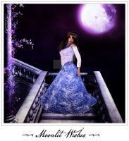 Moonlit Wishes by brandydeshea