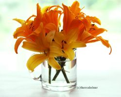 Garden Lilies III by theresahelmer