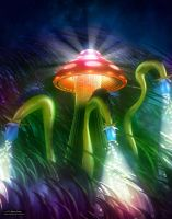 Mushroom Kingdom by robodesign