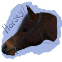 Horse Realism by tailfeather