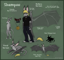The Alfas: Shampoo Reference by AlfaFilly