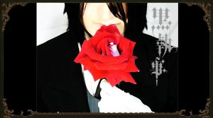 red rose by nemurutenshi-yue