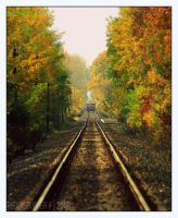 Autumn rail by Zerda-Fox