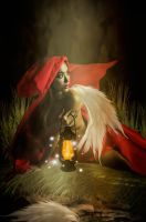 When Little Red Riding Hood lost a wing. by Angelmihrlhen