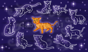 .:Gift from the Starclan :. by Gabychan91