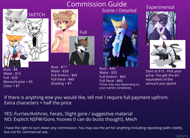 Commission Guide by captyns