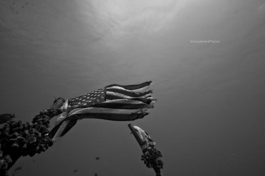 Wreck Dive-Flag by PacIslander2