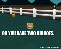 Oh you have two Bidoofs by superphail