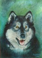 Husky (1st painting) by AbecedarianJameson