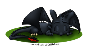 Toothless by Sunny-hoshi by CallMeDani