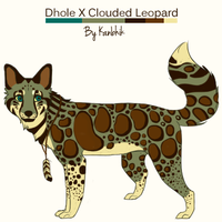 Clouded Dhole by Kanbhik