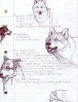 Latin American Wolves by nikkiburr