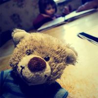 Teddy by supmaite