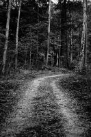 Lonely path.. by AdnanWolf