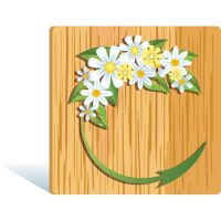 green plant on wooden frame by cgvector