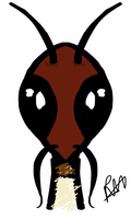 Wise Old Ant by Perianth5