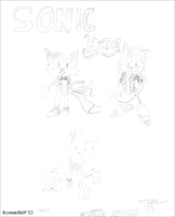 Sonic Heroes:Sonic, Tails, Amy by Bowser81889