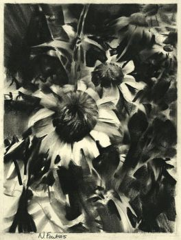 Flowers in Charcoal by NathanFowkesArt