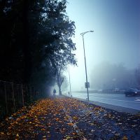 Morning Walk 5 by ghostrider-in-ze-sky