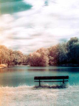 lonely bench by edke