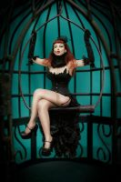 Birdcage by lucylle