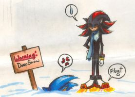 Read the sign sonic.... by Makura-no-iki