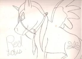MLP/FMA: Red Lotus by ExplodingBlossom