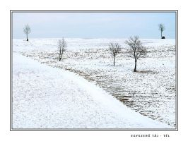 Simple Landscape - Winter by vikingexposure