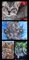 A whole bunch of artist cards :3 by mangakasan