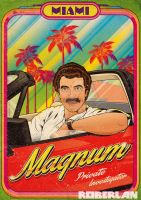 Magnum Private Investigator by roberlan
