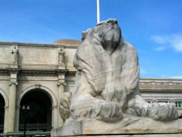 Columbus Lion by 44NATHAN