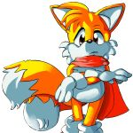 tails Scarf by lynaithan