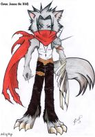 Garou Jonasu the Wolf by tails-miya